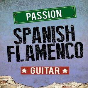 Album Passion: Spanish Flamenco Guitar from Salsa All Stars