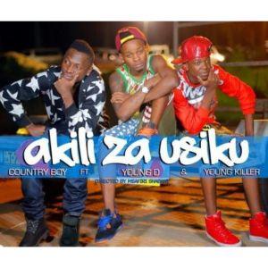 Album Akili za Usiku from Young D