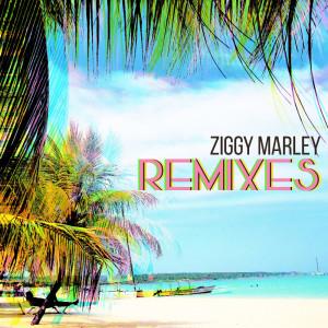 Album Remixes from Ziggy Marley