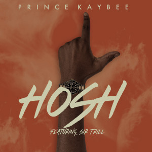 Album Hosh from Prince Kaybee