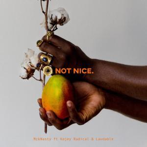 Album Not Nice from Kojey Radical