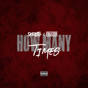 Album How Many Times from Cruzer