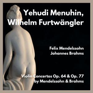 Album Violin concertos op. 64 & op. 77 by mendelssohn & brahms from Yehudi Menuhin