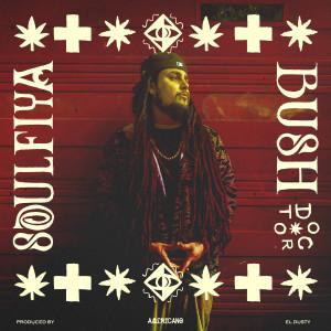 Album Bushdoctor (feat. El Dusty) - EP from Soulfiya