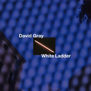 Album White Ladder from David Gray
