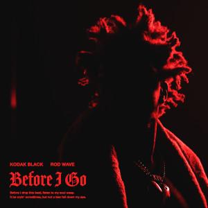 Album Before I Go (feat. Rod Wave) from Kodak Black