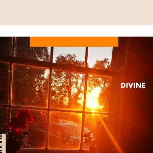 Album Divine from All Tvvins