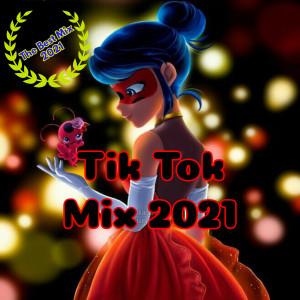 Album Si Te Sabes El TikTok Baila! 2021 Mix Tiktok Vol 6 from Dj Tik Tok Mix