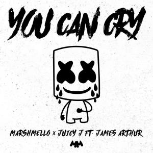 Listen to You Can Cry song with lyrics from Marshmello