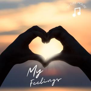 Album My Feelings from Digital Farm Animals