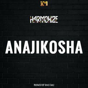 Album Anajikosha from Harmonize