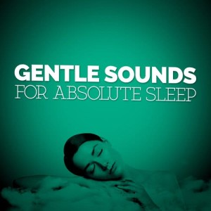 Album Gentle Sounds for Absolute Sleep from Music For Absolute Sleep