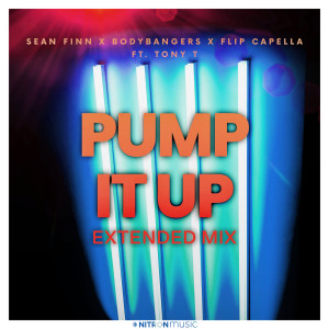 Album Pump It Up (Extended Mix) from Flip Capella