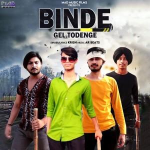 Album Binde Gel Todenge - Single from Krish