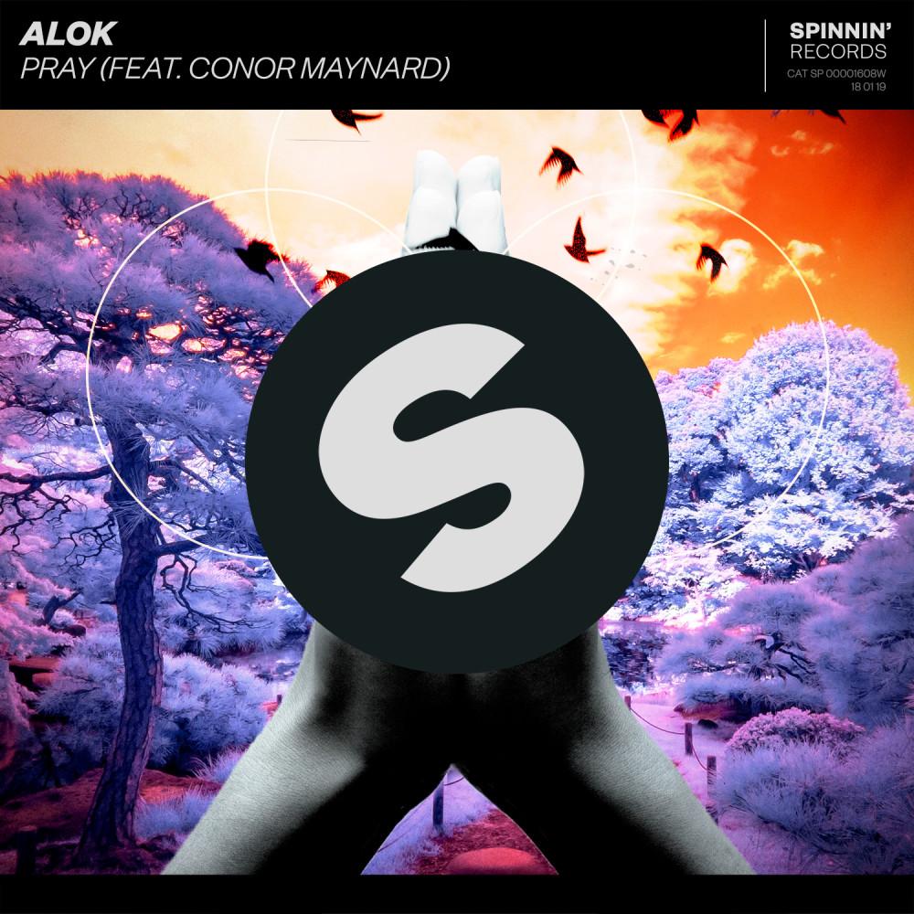 Pray (feat. Conor Maynard) 2019 Alok; Conor Maynard