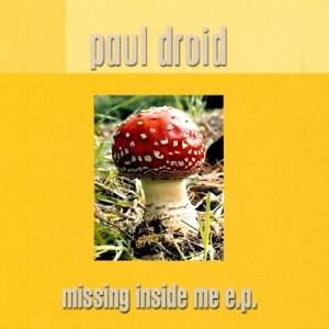 Album Missing Inside Me from Paul Droid