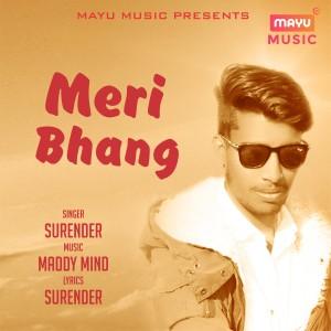 Meri Bhang dari Surender