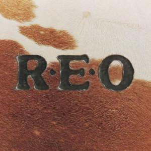 收聽REO Speedwagon的Flying Turkey Trot (Album Version)歌詞歌曲