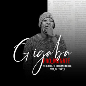 Album Gigaba from Pro Monate