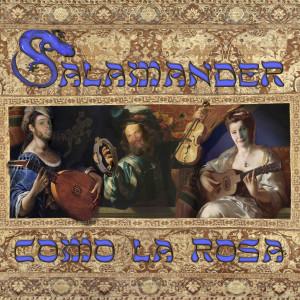 Album Como La Rosa from Salamander