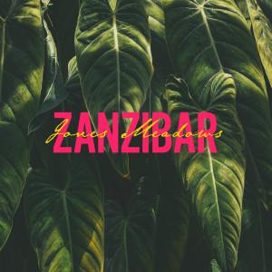 Listen to Zanzibar song with lyrics from Jones Meadow