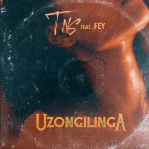 Album Uzongilinga from Fey