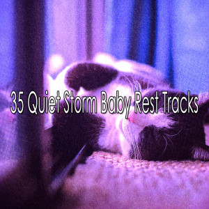 Album 35 Quiet Storm Baby Rest Tracks from Rain Sounds Sleep