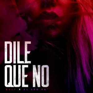 Album Dile Que No from Soly
