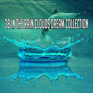 Album 38 In the Rain Clouds Dream Collection from Rain Sounds & White Noise
