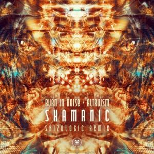 Album Shamanic (Skizologic Remix) from Burn In Noise