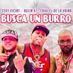 Album Busca un Burro from Chiki El De La Vaina