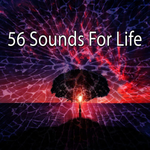 Yoga Music的專輯56 Sounds for Life