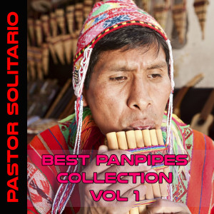 Album Best Panpipes Collection (Volume 1) from Pastor Solitario