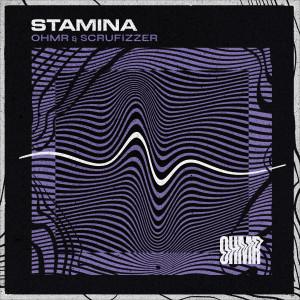 Album Stamina (Explicit) from Scrufizzer