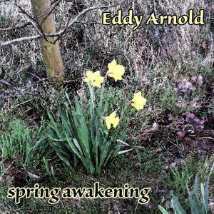 收聽Eddy Arnold的I Walk Alone歌詞歌曲