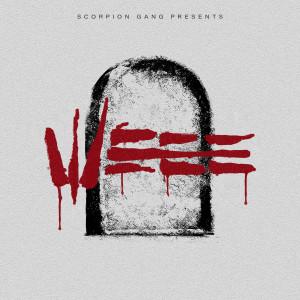 Album WEEE from Summer Cem