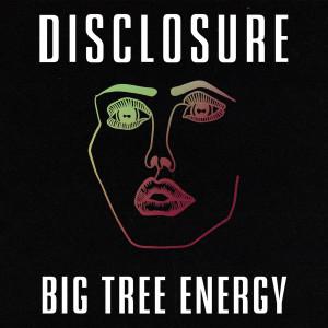 Disclosure的專輯Big Tree Energy (Explicit)