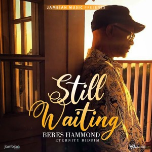 Album Still Waiting from Beres Hammond