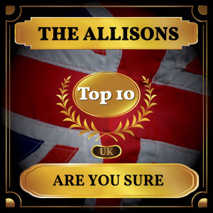 Album Are You Sure from The Allisons