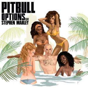 收聽Pitbull的Options歌詞歌曲