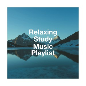 Studying Music的專輯Relaxing Study Music Playlist