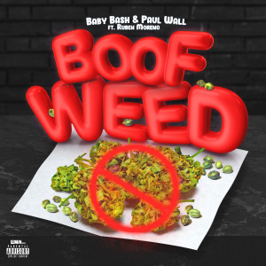 Album Boof Weed (feat. Ruben Moreno) from Paul Wall