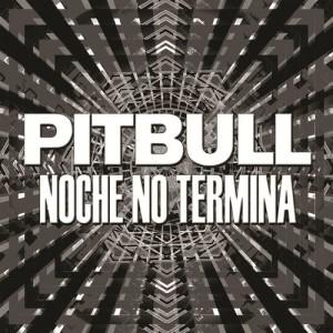 收聽Pitbull的Noche No Termina歌詞歌曲