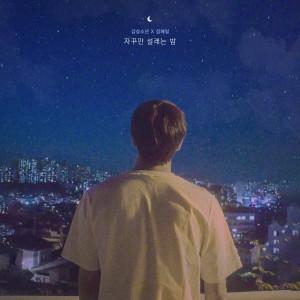 Album constant flutter night from 감성소년