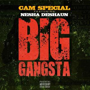 Album Big Gangsta (Explicit) from CAM SPECIAL