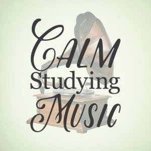 Calm Music for Studying的專輯Calm Studying Music