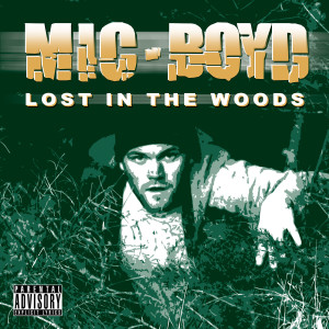 Album Lost In The Woods from Mic Boyd