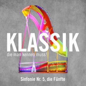 David Zinman的專輯Sinfonie Nr. 5, die Fünfte, - Allegro (Symphony No. 5, the Fifth)