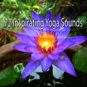 Album 72 Inspirating Yoga Sounds from Asian Zen Spa Music Meditation