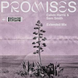 Promises (Extended Mix)